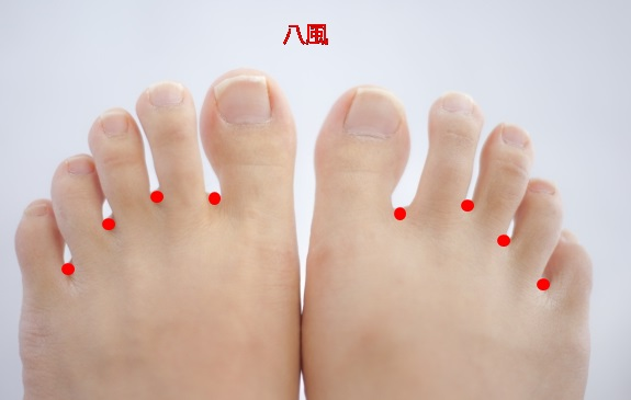 足の甲ツボ自律神経