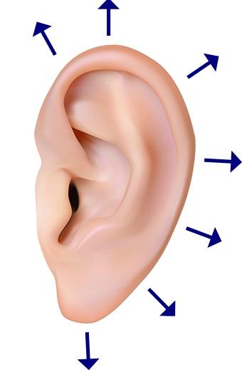 耳のツボマッサージ
