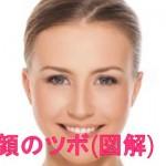 顔のツボ図解