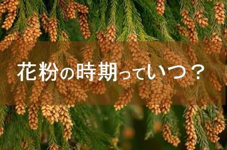 花粉,時期,種類